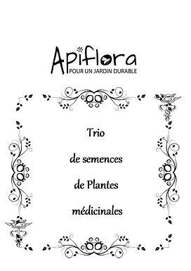 Pack Trio de semences de plantes médicinales