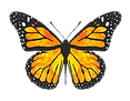 Monarch%20Creative%20Vertical_Logo_edite