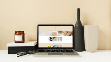 Website Design - Shop Integration
