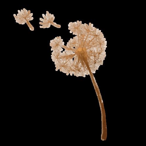 Pollen Full Flower-01.png