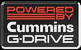 GDrive Badge (2).png