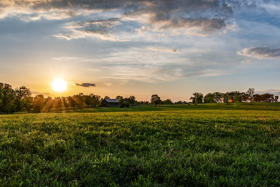 Farm scene at sunset with barn and field