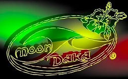 moon daka surfboards.JPG