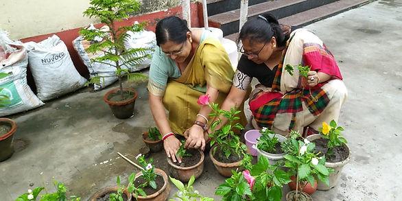 Tree Plantation 2019 - 2.jpeg