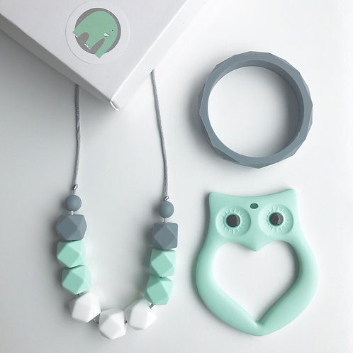 Amy Gift Set including Elephant or Owl Teether