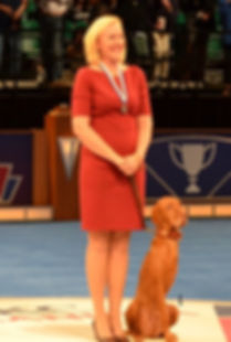2013 Exemplary Companion AKC Humane Fund ACE Vizsla Bart