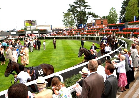 Do you know your jump racecourses?