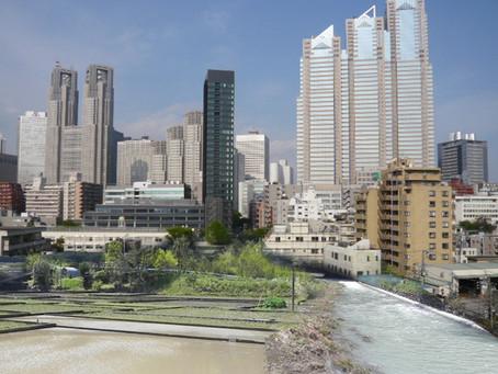 水の話-2・・・都市の涵養域の必要性