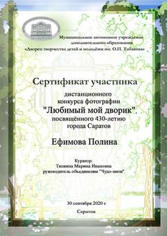 сертификат Ефимова.jpg