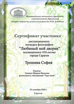 сертификат Трошина.jpg