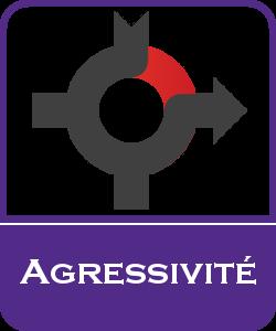 Comprendre l'agressivité