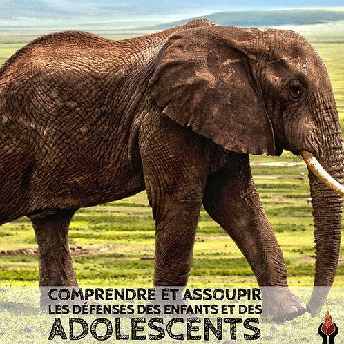 Comprendre et assoupir les défenses des enfants et des adolescents