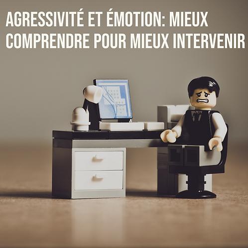 Agressivité et émotion: mieux comprendre pour mieux intervenir