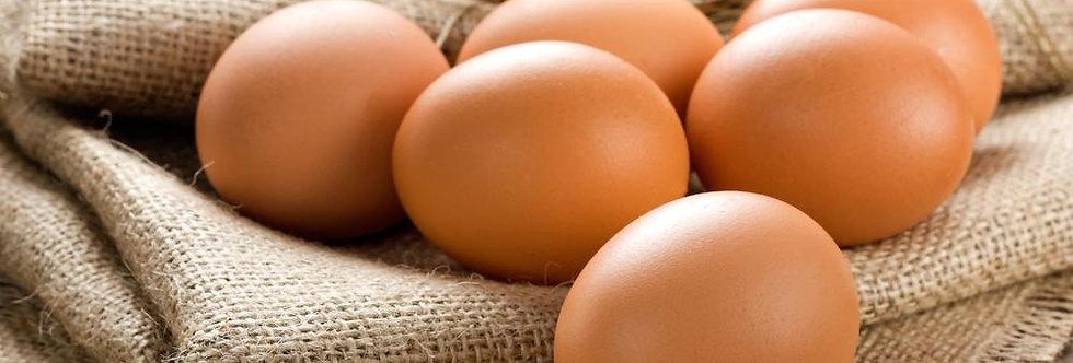 Free Range Eggs - Very Large