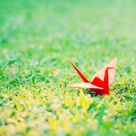 Peace Crane Challenge