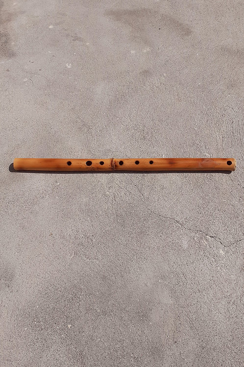 Diatonic Plagiaulos - Side Flute