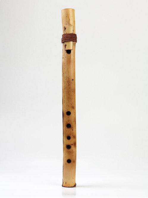 River Flute