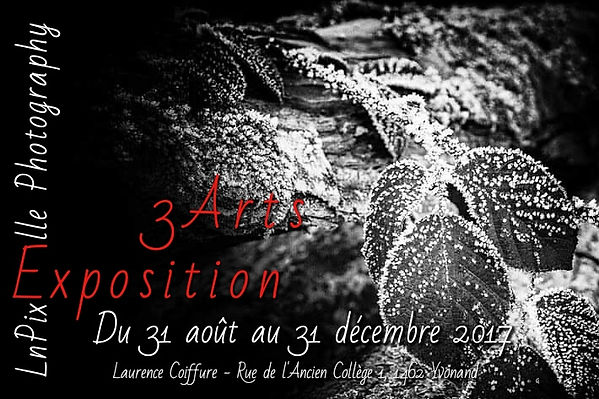 Exposition 3Arts
