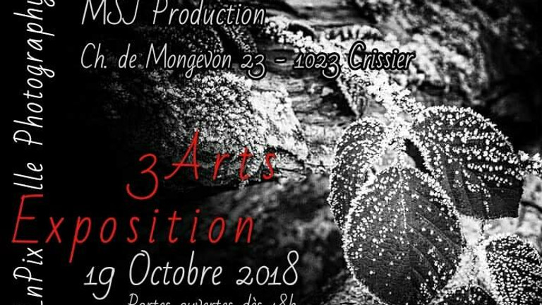 Exposition 3 Arts