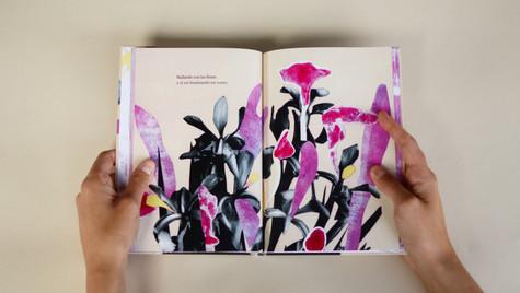 Libro Desequilibrios primaverales