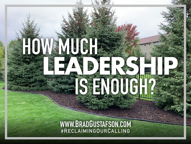 How Much Leadership is Enough?