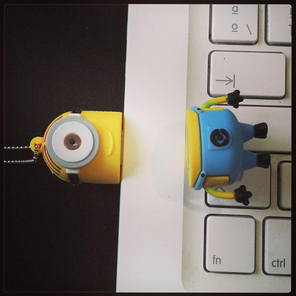 0035 TAMMY HERZ 250 USB MINION c desc.jpg