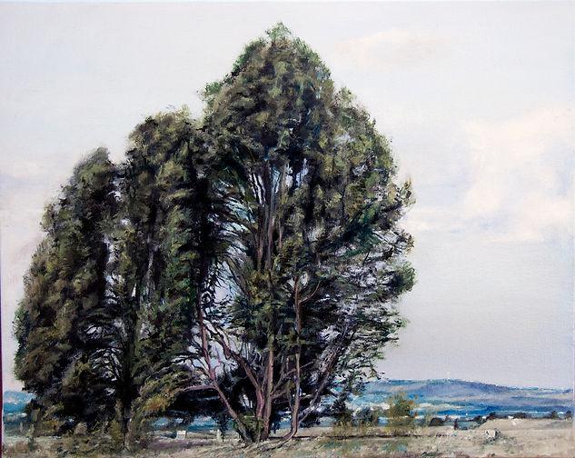 60X40 עצים בעמק.JPG