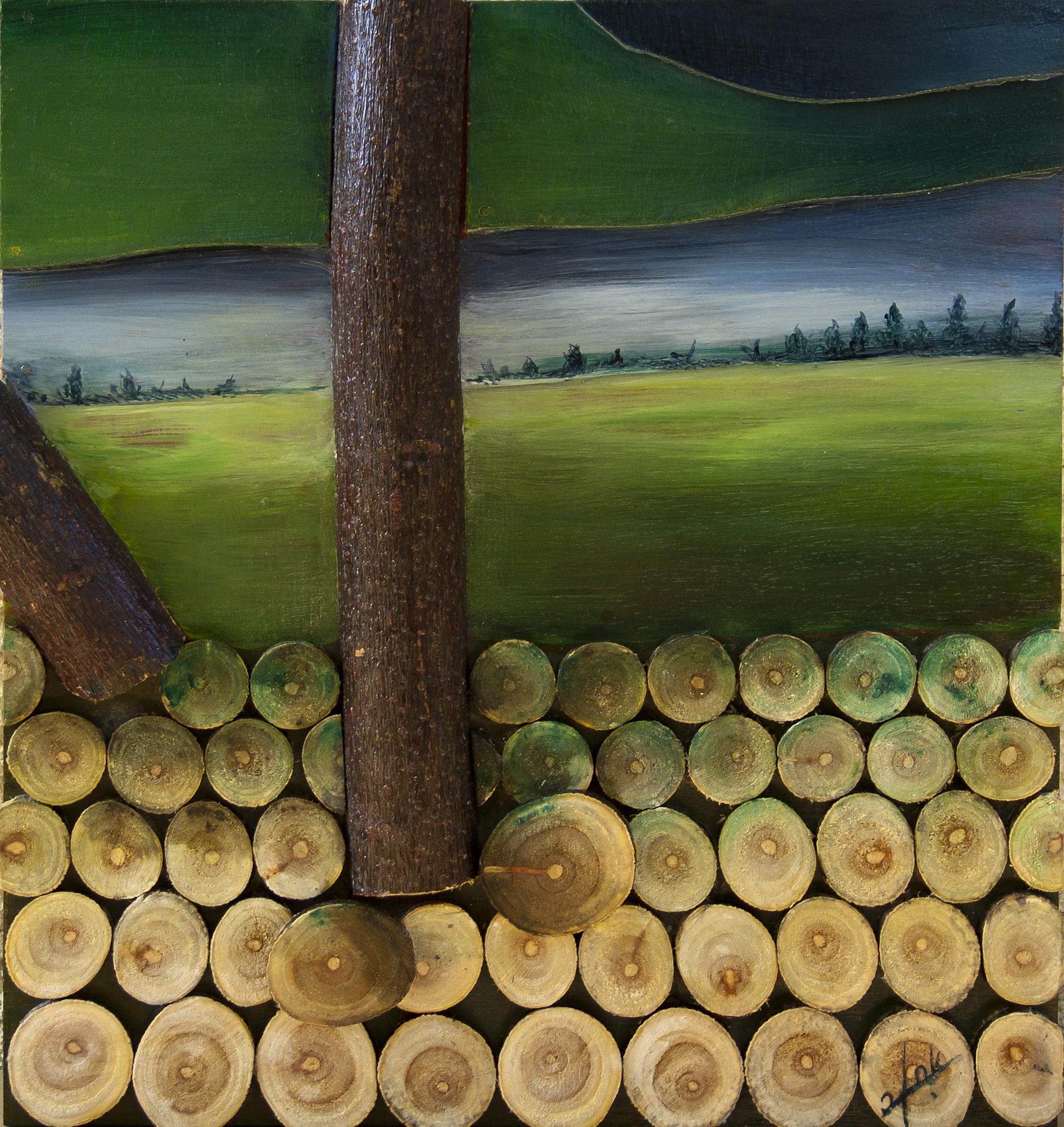 אומנות בעץ | מבט ביער