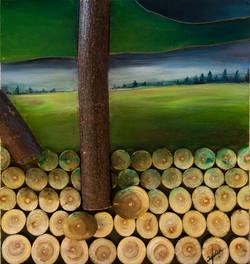 אומנות בעץ   מבט ביער