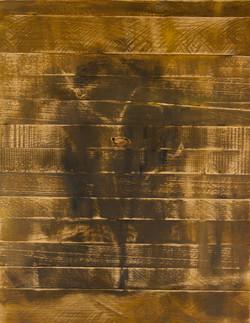 אומנות בעץ | אקליפטוס