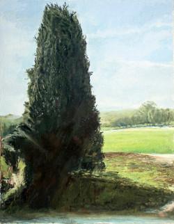 Cyprus In Megiddo