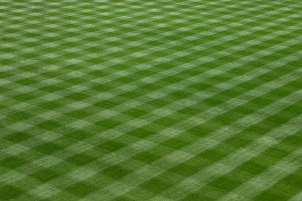 baseball-field-grass.jpg