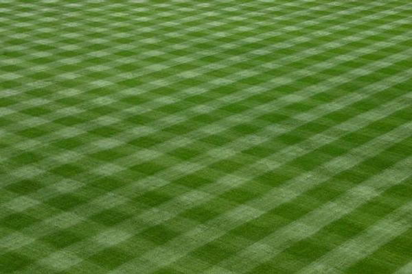 baseball-field-grass.jpg