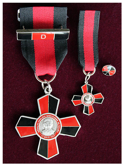 Resultado de imagem para medalha dráusio