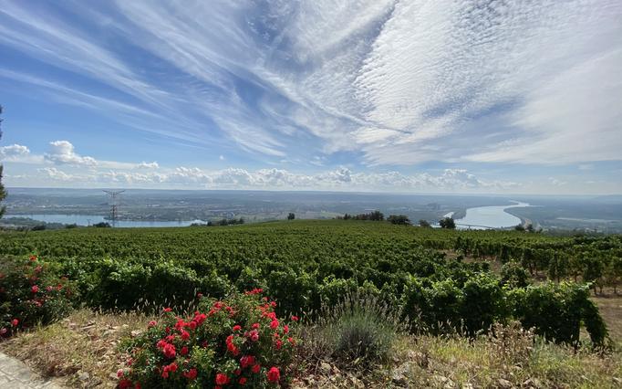 Vue depuis Chavanay, Domaine du Monteillet, Côtes du Rhône