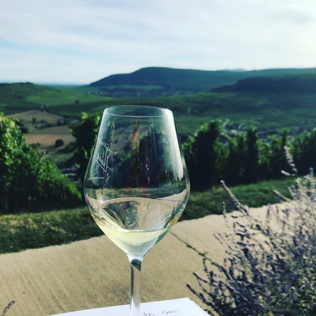 Degustation with a view