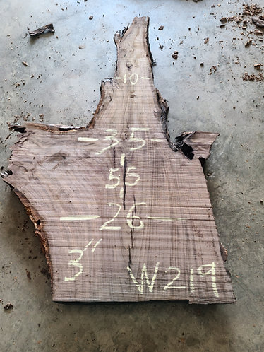 Walnut Burl #219