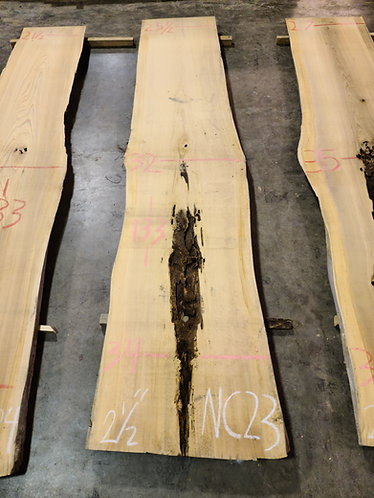 New Cypress #23