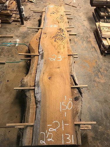 Sinker Cypress #131