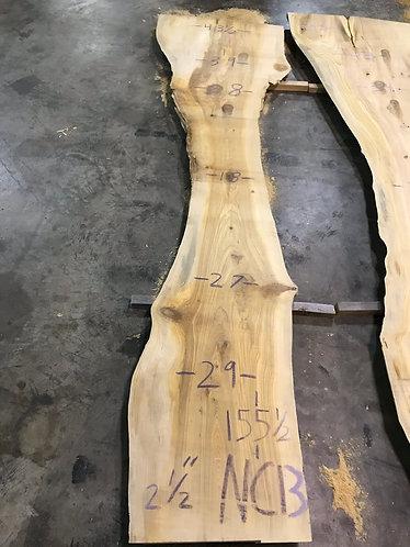New Cypress NC13