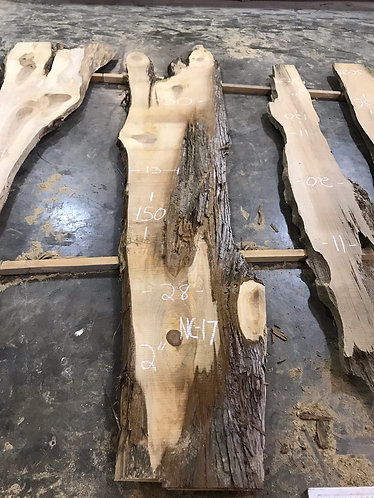 New Cypress NC17