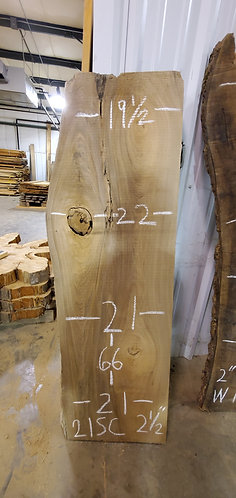 Sinker Cypress #21