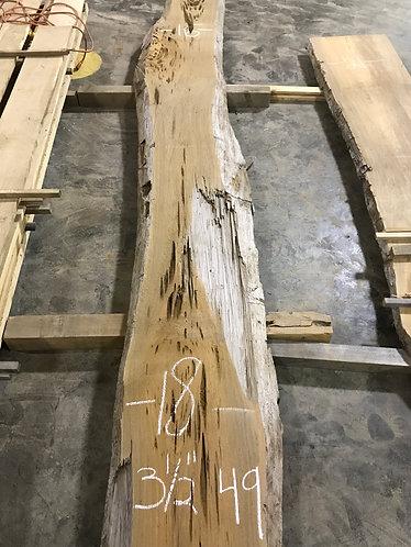Sinker Cypress #49