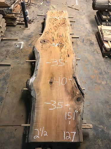 Sinker Cypress #127