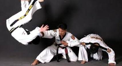 Hapkido 1.jpg