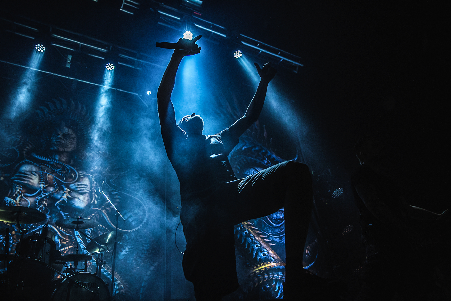 Meshuggah (Sweden)