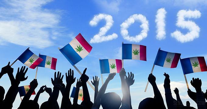 Le cannabis en France – ce qui s'est passé en 2015