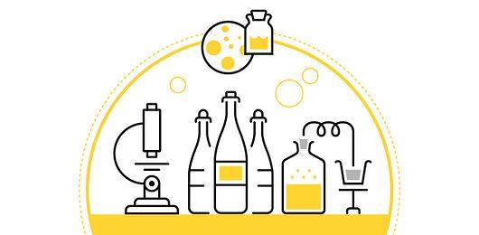 Ilustração de garrafas de vinho e cerveja e laboratório para análise de bebidas.