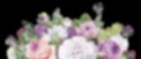 flores cópia.png