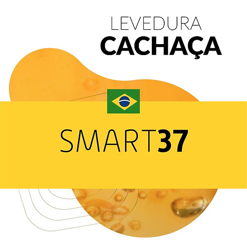 Levedura Cachaça SMART 037